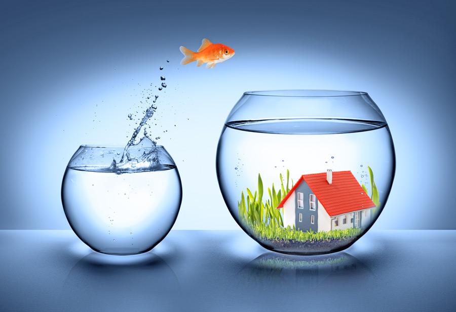 Sprung_ins_Glueck_mit_Immobilienkauf_und_Immobilienverkauf