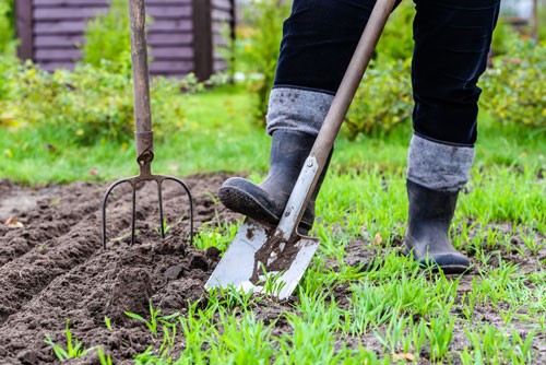 Hilfe_bei_der_Gartenarbeit_fuer_Senioren_durch_Loesung_mit_Immobilienprofis_aus_Holzkirchen_von_rimaldi